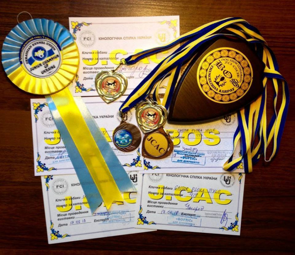 Dervisch Olympia Flora Style - Junior Champion of Ukraine!